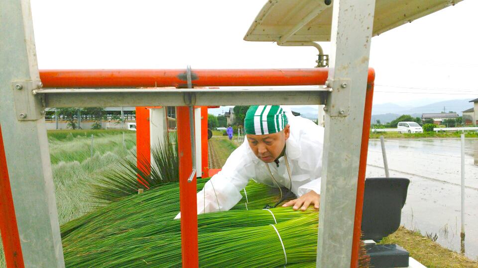 熊本いぐさ農家 研修 オオタケ笑顔ブログ